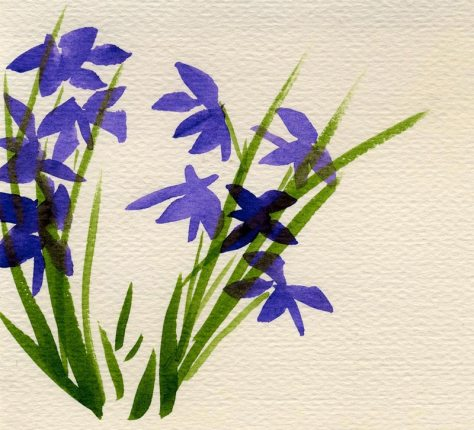 Purple Iris watercolor